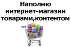 Ручное наполнение интернет-магазина товаром 23 - kwork.ru