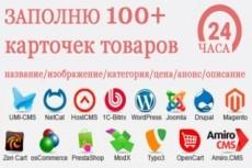 Заполню Ваш сайт товарами, контентом 7 - kwork.ru