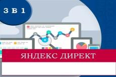 Настройка Яндекс.Директ под ключ до 150 фраз на поиске и РСЯ 10 - kwork.ru