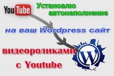 Подключу автонаполнение к вашему сайту на Wordpress 3 - kwork.ru
