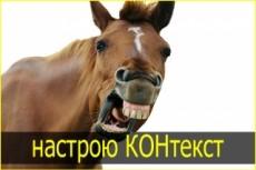 Аудит рекламной кампании Яндекс Директ. Сертифицированный специалист 28 - kwork.ru