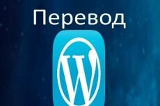 Перевод темы Wordpress с английского на русский язык 13 - kwork.ru