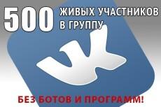 Добавлю 777 подписчиков в Вашу группу, паблик или на аккаунт ВК 14 - kwork.ru