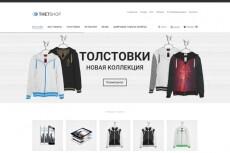 интернет-магазин на WordPress 10 - kwork.ru
