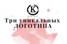 Создам три варианта Вашего логотипа 13 - kwork.ru
