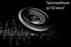 Перевод видео-, аудио- в текст, расшифровка записей в текст 14 - kwork.ru