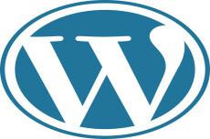 Премиум шаблон WordPress BeOnePage 25 - kwork.ru