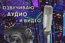 Озвучу аудио и видео 2 - kwork.ru