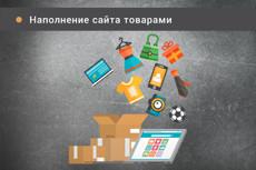Наполнение контентом 12 - kwork.ru