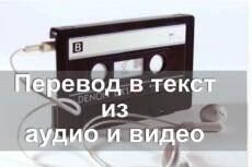 Перевод аудио и видео в текст 23 - kwork.ru