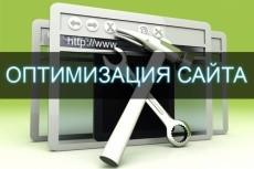 сделаю первоначальную оптимизацию 10 страниц 9 - kwork.ru