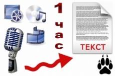 Быстро переведу Вам любые аудио и видео файлы в текст 20 - kwork.ru
