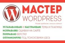 7 универсальных премиум шаблонов на Wordpress 3 - kwork.ru