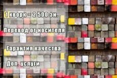 Выполню перевод с английского или французского 21 - kwork.ru
