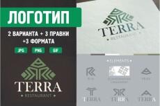 Разработаю 3 потрясающих логотипа 26 - kwork.ru
