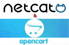CMS Opencart. Консультация магазина 15 - kwork.ru