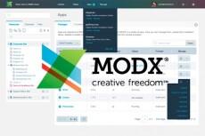 установлю и настрою ModX Revo 3 - kwork.ru