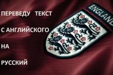 Сделаю технический, литературный перевод с английского на русский язык 9 - kwork.ru