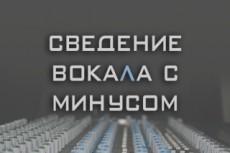 Тюнинг  вокала одного трека до 4 мин 12 - kwork.ru