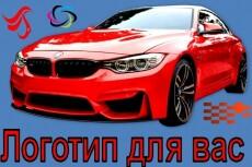 Дизайн логотипа по Вашему вкусу 24 - kwork.ru