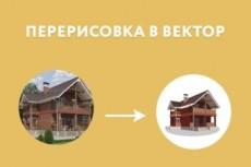 Переведу (векторизую) растровое изображение в векторное 25 - kwork.ru