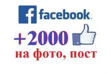Facebook - 5000 Лайков на фото, посты 16 - kwork.ru