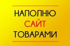 Наполню сайт товарами 9 - kwork.ru
