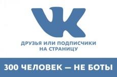 500 друзей - подписчиков на профиль ВК - на личную страницу 6 - kwork.ru