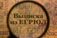 Подготовлю документы для внесения изменений в сведения об ООО, ИП 7 - kwork.ru