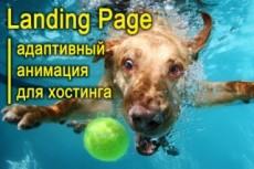 Адаптивный лендинг 22 - kwork.ru