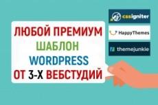 Премиум шаблон WordPress BeOnePage 20 - kwork.ru