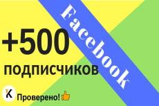 Добавлю 2000 вечных подписчиков на паблик в Facebook 18 - kwork.ru