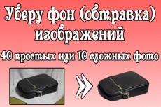 Удаление фона с 40 изображений (обтравка) 17 - kwork.ru