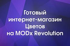 Продам интернет-магазин любых товаров на modx с фильтром, поиском 3 - kwork.ru