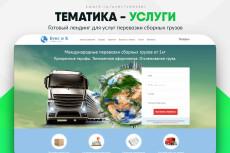Скопировать Landing page, одностраничный сайт, посадочную страницу 223 - kwork.ru