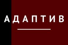 Натяну верстку на движок wordpress, не магазин 16 - kwork.ru