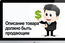 Описание товаров для интернет-магазинов 23 - kwork.ru