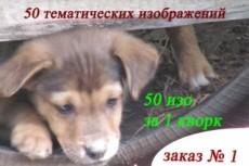 30000 изображений без фона 13 - kwork.ru