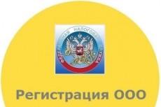 Подготовлю документы для регистрации ООО с одним учредителем 17 - kwork.ru