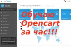 Установка модуля экспорта и импорта данных на сайт на Опенкарт 29 - kwork.ru