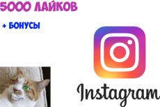 100000 лайков на Ваши публикации в Инстаграм. Вывод в топ по хэштегам 3 - kwork.ru