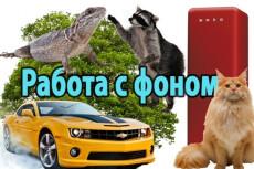 Набор текста качественно и быстро 25 - kwork.ru