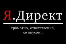 Полноценная настройка РСЯ в Яндекс Директ по целевым ключам 17 - kwork.ru