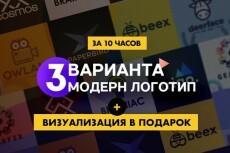 Разработаю 2 варианта логотипа +  визуализация, фавикон, 2 правки 24 - kwork.ru