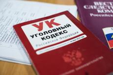 Сделаю заключение о признаках преднамеренного и фиктивного банкротства 19 - kwork.ru