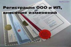 Документы на внесение изменений в ООО, ИП 12 - kwork.ru