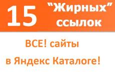 10 ссылок с тиц от 1000 и далее 9 - kwork.ru