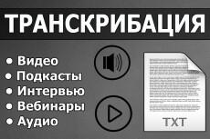 Создам видео, скринкаст, видеообзоры сайта, приложения, с озвучкой 18 - kwork.ru