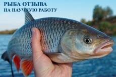 Качественно и быстро сделаю вычитку и корректуру любого текста 3 - kwork.ru