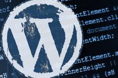 Правки сайта на Wordpress 9 - kwork.ru